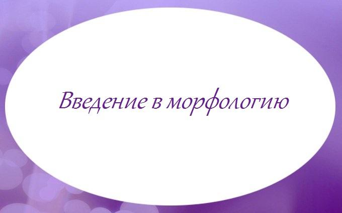 Введение в морфологию